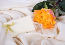 Yellow rose and a card Royalty Free Stock Image