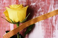 Yellow rose and catalan flag. A yellow rose and a catalan flag on a rustic wooden surface for Sant Jordi, the Catalan name for Saint Georges Day, when it is Royalty Free Stock Photography