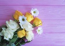Yellow rose chrysanthemum on pink wooden background. Yellow rose chrysanthemum pink wooden background n Royalty Free Stock Image