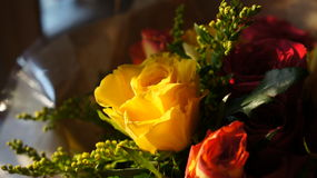 Yellow Rose. A close up shot of a Yellow Rose in a bouquet of flowers lit with evening sunlight Stock Photography