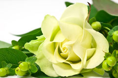 Yellow rose and decorations Royalty Free Stock Images