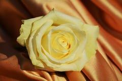 Yellow rose on an elegant fabric Stock Photo