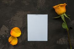 Yellow rose and empty card on a dark background Stock Photo