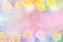 Yellow rose flower frame vintage color filters, background. For valentine or wedding card stock image