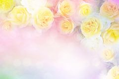 Yellow rose flower frame vintage color filters, background. For valentine or wedding card stock photos