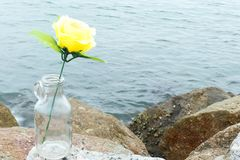 Yellow rose flower in to the bottle on the stone and sea backgro Stock Image