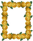 Yellow Rose Frame Background Royalty Free Stock Images