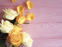 Yellow freshness birthday romance greeting rose on a pink wooden background, frame. Yellow rose freshness on a pink wooden background frame greeting birthday Stock Images