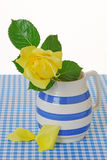 Yellow Rose in a Jug Stock Photography