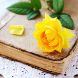 Yellow rose laying upon vintage book on lace doily Stock Photo