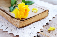 Yellow rose laying upon vintage book on lace doily Stock Image