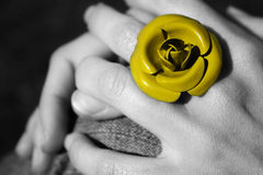 Yellow rose ring Stock Photography