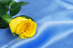 Yellow rose on satin Stock Photos