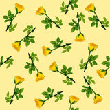 Yellow rose Seamless pattern. Vector background Royalty Free Stock Photo