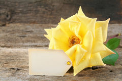 Yellow Rose and Tag Stock Photography