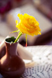 Yellow rose in the vase Stock Images