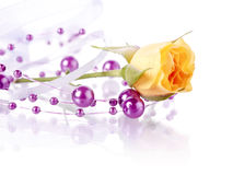 Yellow rose and violet beads. Stock Photos
