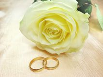 Yellow rose and wedding rings. On satin beige background Stock Photography