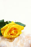Yellow rose and wedding rings. Wedding background with copy space Stock Photography
