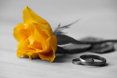 Yellow rose and wedding rings. Lie on a table Royalty Free Stock Image
