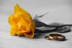 Yellow rose and wedding rings. Lie on a table Stock Photography