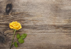 Yellow rose on wooden background Royalty Free Stock Image