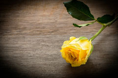 Yellow rose on wooden texture Stock Photo