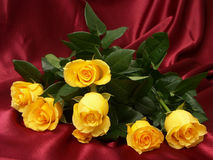 Yellow roses. Bouquet of yellow roses stock photo