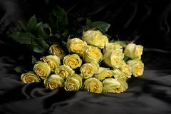 Yellow roses. A bunch of yellow roses on black background Royalty Free Stock Images