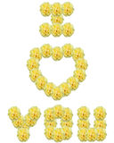 Yellow Roses. Roses spelling out I love you Royalty Free Stock Images