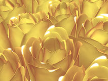 Yellow Roses. Close up of a bed of yellow roses Royalty Free Stock Images