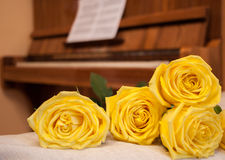 Yellow roses on background of piano with sheet music. royalty free stock image