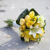 Yellow roses on beach Stock Images