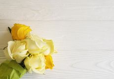 Yellow roses birthday white wooden background decorative place for text Royalty Free Stock Images