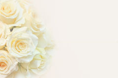 Yellow Roses Border Background stock photo