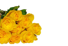 Yellow Roses. A bunch of yellow roses isolated Stock Photos