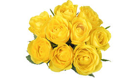 Yellow roses. Bunch of yellow roses isolated on white background Stock Images