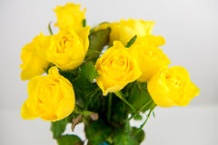 Yellow roses. Bunch of yellow roses on white Stock Photos