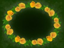 Yellow roses. Yellow roses on a green background Stock Photo