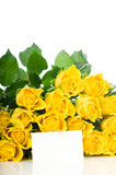 Yellow roses with greeting card Royalty Free Stock Images