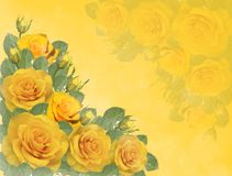 Yellow roses. Greeting card with yellow roses on a yellow background Stock Photo