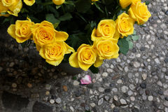 Yellow Roses by path. A bunch of yellow roses by a stony paved path Stock Photos