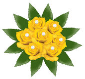 Yellow roses with pearls. Vector bunch of yellow roses with pearls Stock Photos