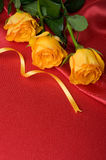 Yellow roses on red satin Stock Images