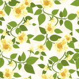 Yellow Roses Seamless Pattern Royalty Free Stock Photos