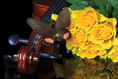 Yellow roses and violin. A bunch of yellow roses besides a violin while a butterfly is landing Stock Photography