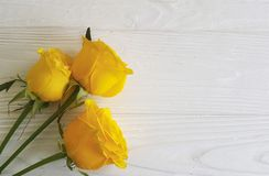 Yellow roses wedding birthday white wooden background decorative place for text Royalty Free Stock Photography