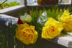 Yellow roses in wedding gazebo. Yellow and red roses in wedding bouquet Stock Photos