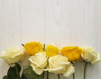 Yellow roses weddingwhite wooden background decorative place for text Royalty Free Stock Photography