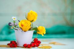 Yellow roses on a wooden table. An autumn background with copy space. Autumn still life. Selective focus Royalty Free Stock Photo